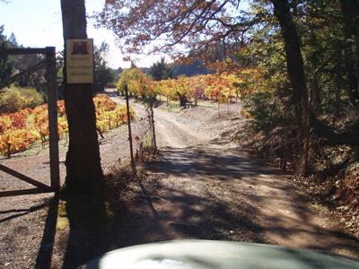 mayacamas road