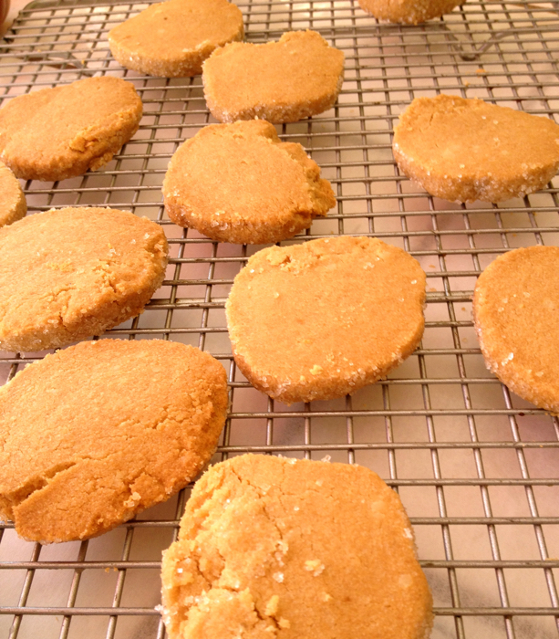with teff flour toasted flour shortbread not without salt toasted ...